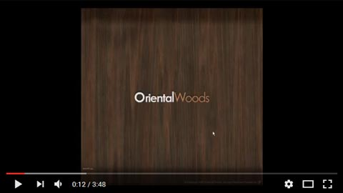 ORENTAL WOODS DVD INTERACTIVE